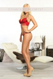 Frankfurt Am Main Escorts Ava